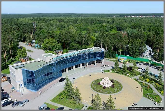 Картинки лето в новосибирске