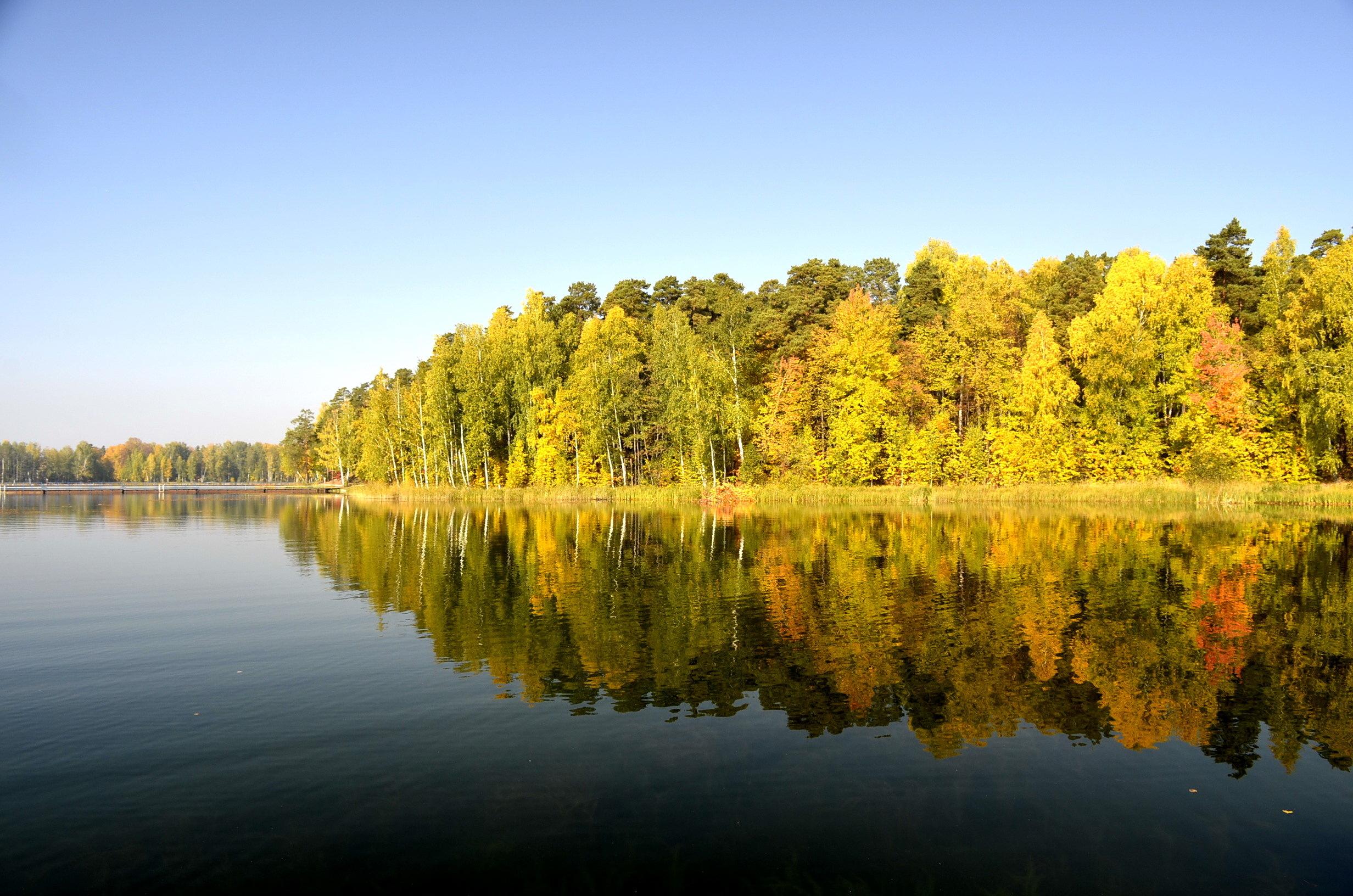 Обед прикольные, картинки челябинские озера
