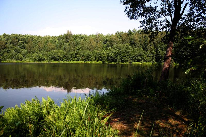 рыбалка на озерах клепиковский район