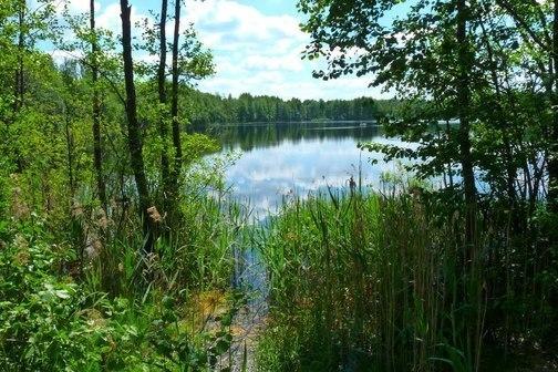 рыбалка на озере сегдено рязанская область